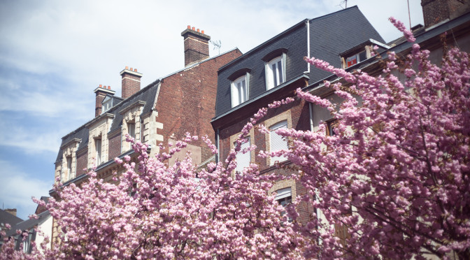 Руан (Франция). Rouen (France). 2013